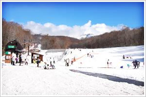 スキー&スノボープラン(写真)